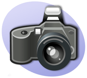 P Photography