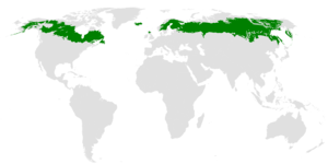 Map of temperate forest biome. Taiga Wikipedia