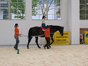 English: Therapeutic horse riding on the Medic...