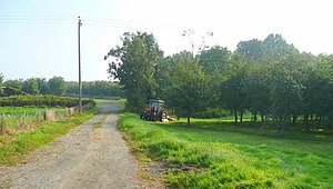 English: Cider orchards east of Hereford 1 The...