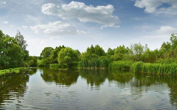 река — Wiktionnaire