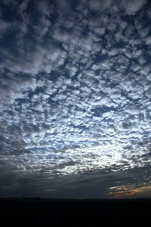 Mackerel sky over Lincolnshire, England.
