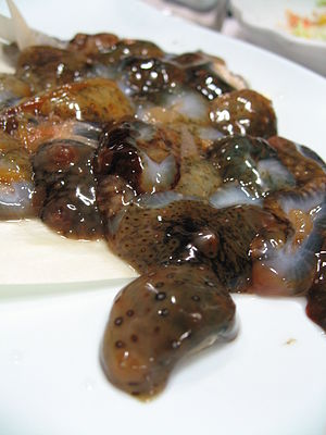 Korea-Sea cucumber-Haesam hoe