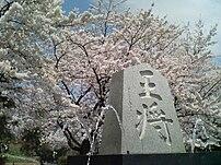 舞鶴山), Ten...
