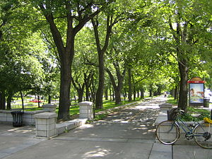 Bikepath in parc Lafontaine, towards the south...