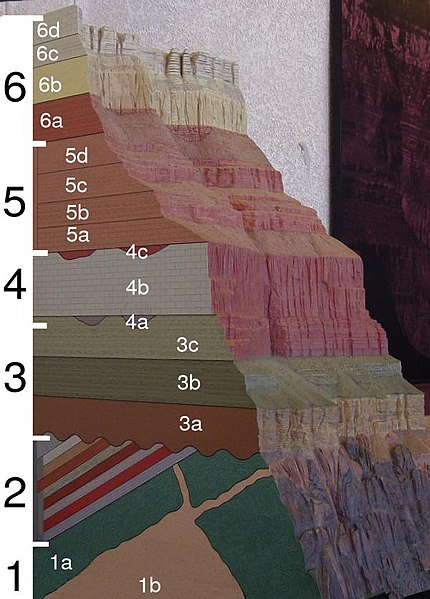 File:Grand Canyon geologic column.jpg