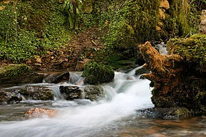 English: peaceful here the stream between Oakh...