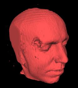 Голова зроблена з 150 магнітно-резонансних знімків перероблених алгоритмом marching cubes (близько 150 000 трикутників)