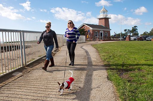 Walking the Dog by the Santa Cruz Lighthouse (8322993412)