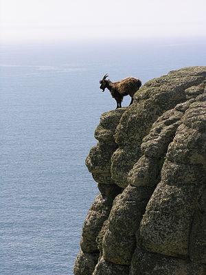 On the edge II