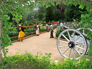 Botanical gardens at Ootacamund (Ooty), India....
