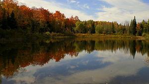 Orangeville Park in Orangeville, Ontario in th...