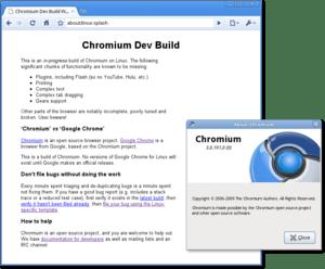 Google Chromium alpha for Linux. User agent: M...