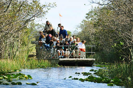 Miami everglades airboat tourism