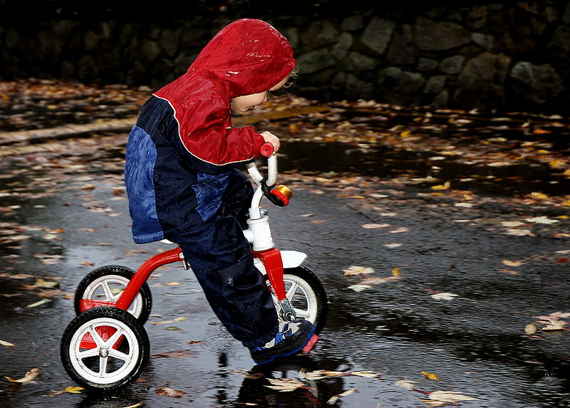 File:Trike in the Rain.jpg