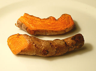 https://i1.wp.com/upload.wikimedia.org/wikipedia/commons/thumb/6/67/Turmericroot.jpg/320px-Turmericroot.jpg