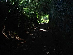 Narrow lane carved through steep rock bank A d...
