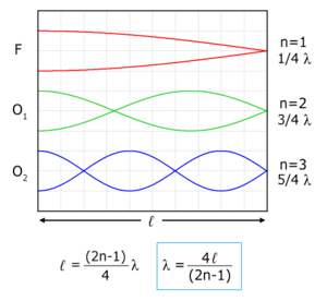 Physical representation of first (O 1 ) and se...