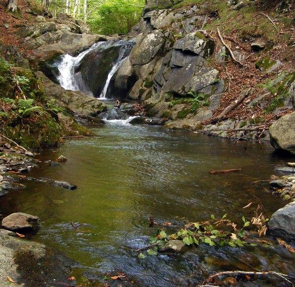 Стара река (приток на Стряма) – Уикипедия