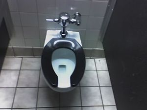 photo of toilet seat
