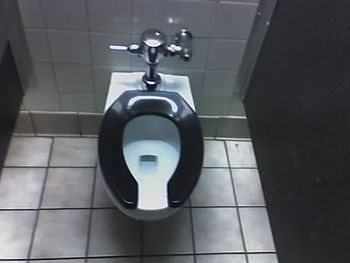 English: photo of toilet seat