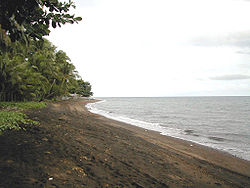 A beach in Dauin.