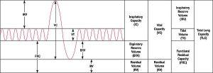 Spirometry  Wikipedia