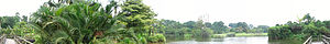 Singapore Botanic Gardens established 1822. Ec...