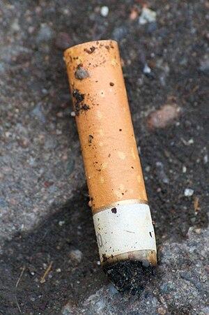 Cigarette butt. Norsk (bokmål): Sigarettsneip.