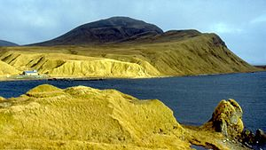 English: This picture of Adak Island's tundra ...