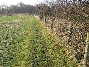 English: Path near Gamesley Fold Farm
