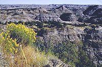 セオドアルーズベルト国立公園.jpg