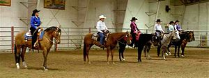 The lineup of a western pleasure class at a sm...