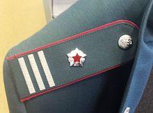 Советник государственной гражданской службы Российской ...