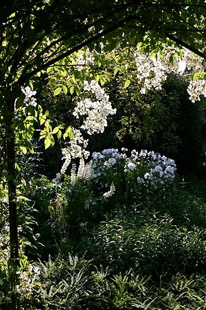 Rose arbor in Sissinghurst's White garden room...
