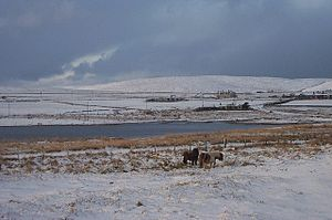 English: White Christmas at Baltasound Well, B...