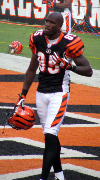 Chad Ochocinco with the Bengals