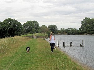English: Running on the Dam at Tringford Reser...