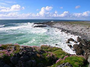 English: The Coast from R477, The Burren, Co. ...