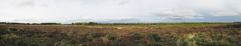 Panorama of the battlefield. The Jacobite lines to the left, the Government lines to the right..