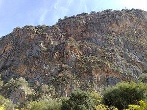 Monte Pellegrino in Palermo (Riserva naturale ...