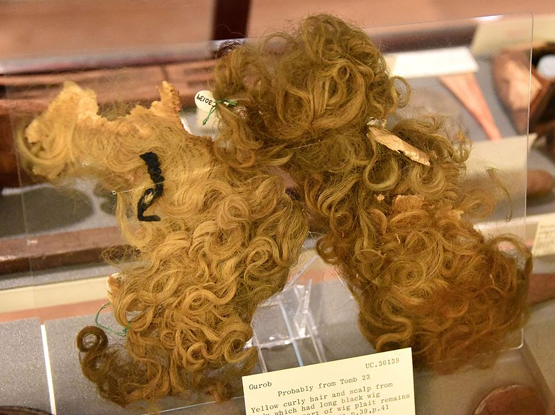 FileYellow Curly Hair And Scalp From Body Which Had Long