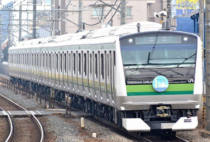 主力車両E233系6000番台(2014年2月2日 鴨居駅)