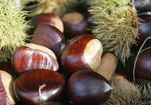 English: Chestnuts. Français : Chataignes.