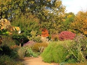 Outdoor view - Atlanta Botanical Garden