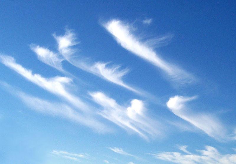File:Cirrus clouds2.jpg