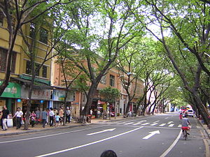 English: A Guangzhou street near Haizhu Square.