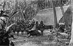 Науруанці поряд з традиційним житлом на світлині  1896 року