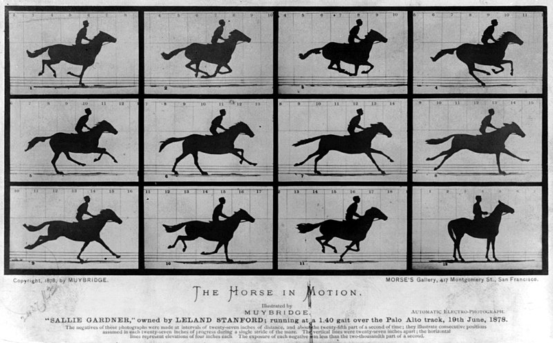 File:The Horse in Motion.jpg