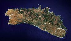 Fotograf�a satélite de la isla de Menorca